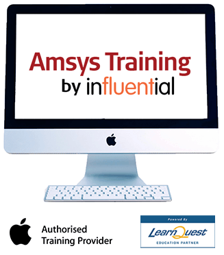 About-Amsys-Training-by-Influential
